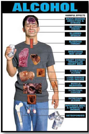 Drinking Alcohol Effects On Body